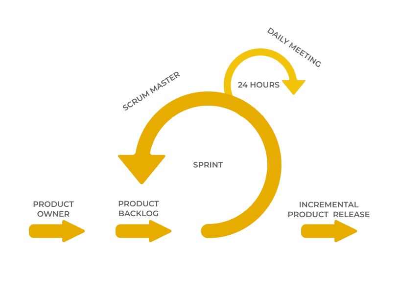 How to build a software product everybody would like to use. Scrum development cycle